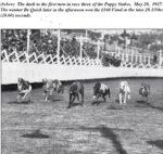 Grey Floray winning at Harold Park 1953